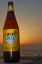 Blue_ocean_strategy_cobra_beer