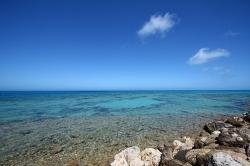 Blue_ocean_strategy_hcl_blue_ocean_